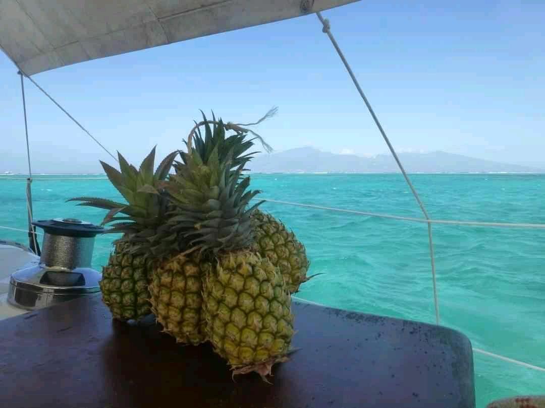 Ananas ?